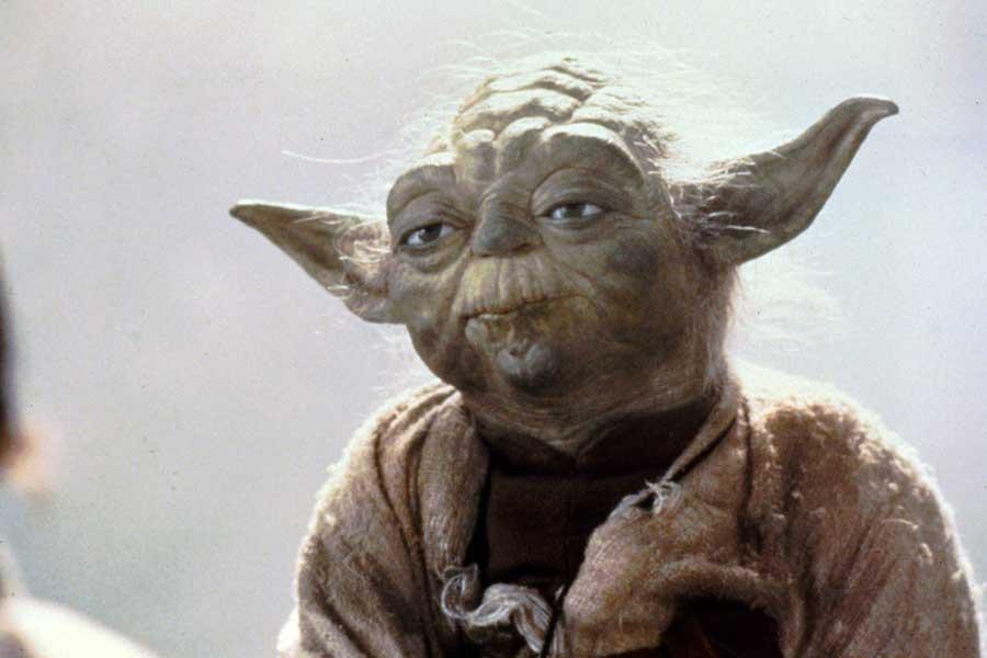 """Mistrz Yoda kontra ksiądz, który na ślubie zaśpiewał """"Hallelujah"""""""