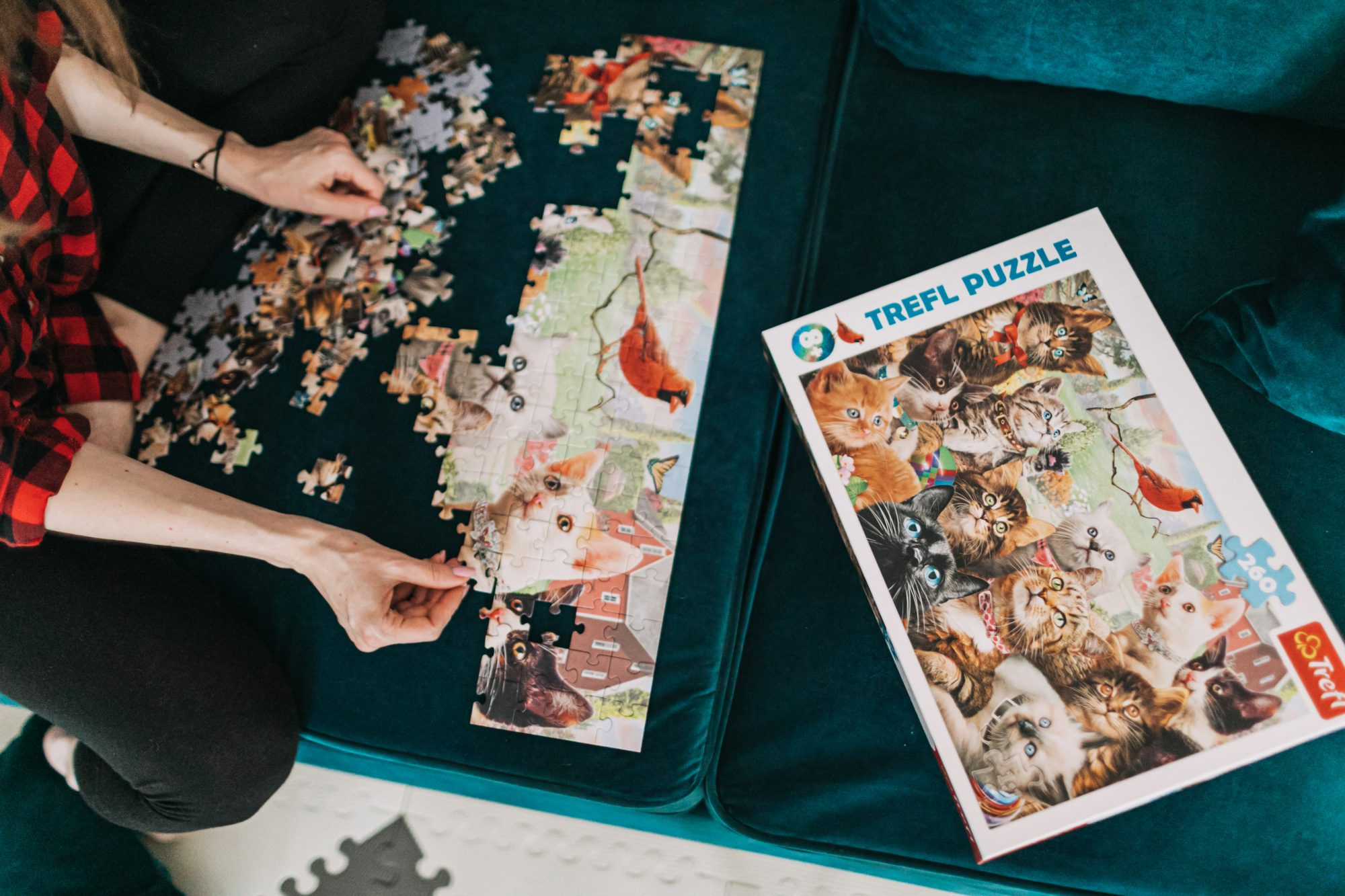 trefl puzzle